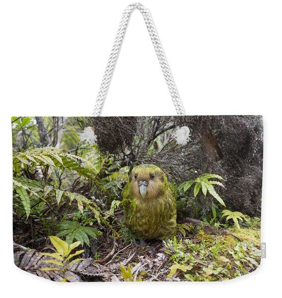 Kakapo Male In Forest Codfish Island Weekender Tote Bag