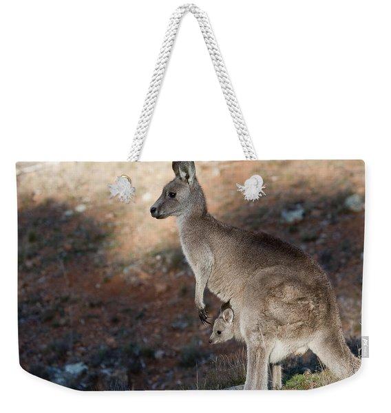 Kangaroo And Joey Weekender Tote Bag