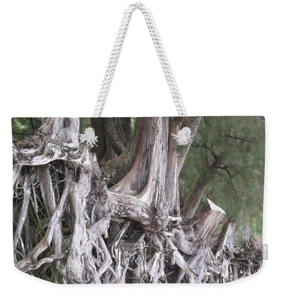 Kauai - Roots Weekender Tote Bag