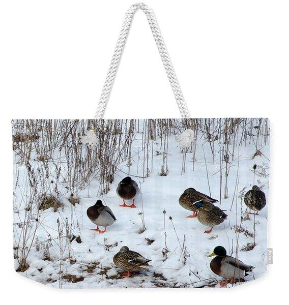 Keeping Warm Weekender Tote Bag