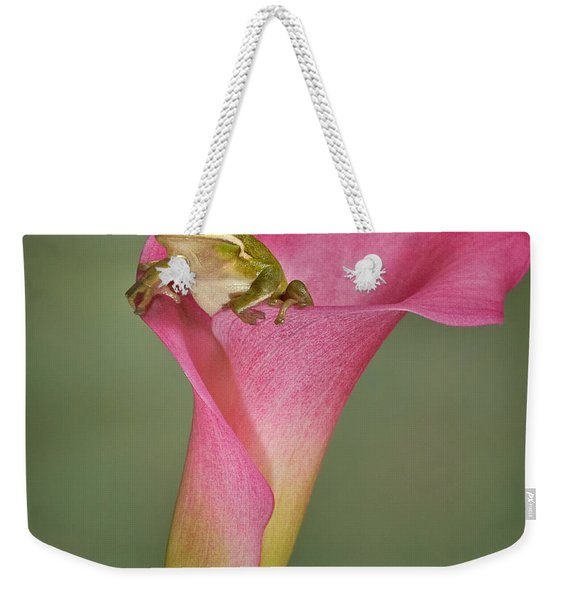 Kermit Peeking Out Weekender Tote Bag