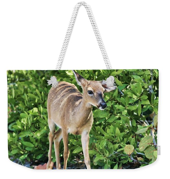 Key Deer Cuteness Weekender Tote Bag