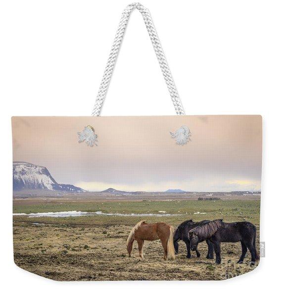 Kings Of The Nordic Twilight Weekender Tote Bag