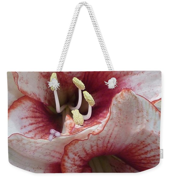 Kisses  Weekender Tote Bag