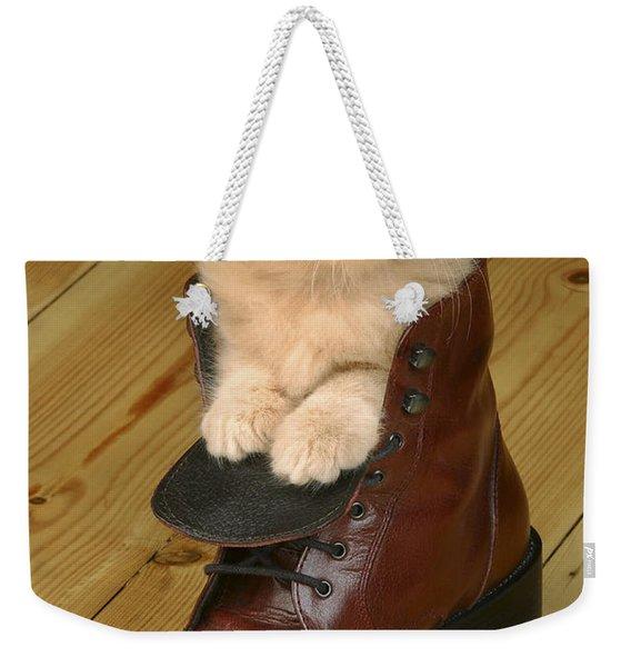 Kitten In Shoe Ck181 Weekender Tote Bag