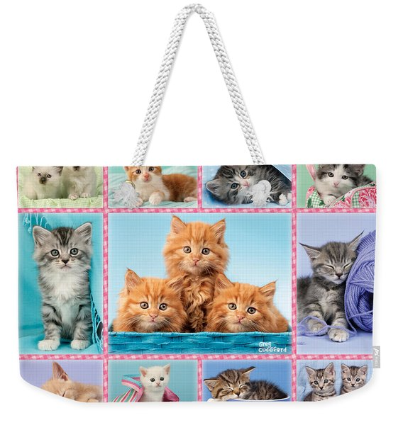 Kittens Gingham Multi-pic Weekender Tote Bag