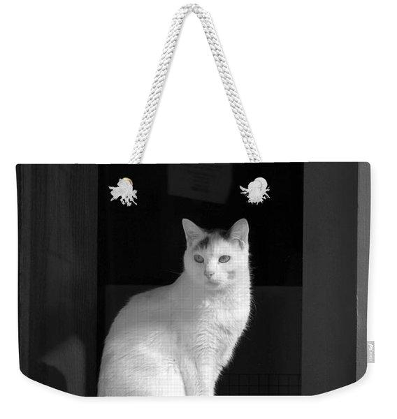 Kitty In The Window Weekender Tote Bag