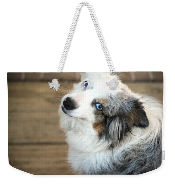 Kora The Australian Shepherd Weekender Tote Bag