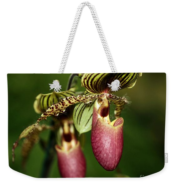 Lady Slipper Orchid Twins Weekender Tote Bag