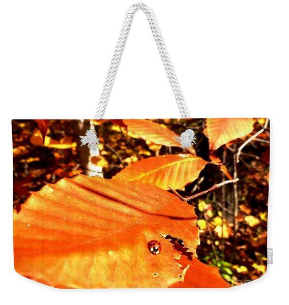 Ladybug At Fall Weekender Tote Bag