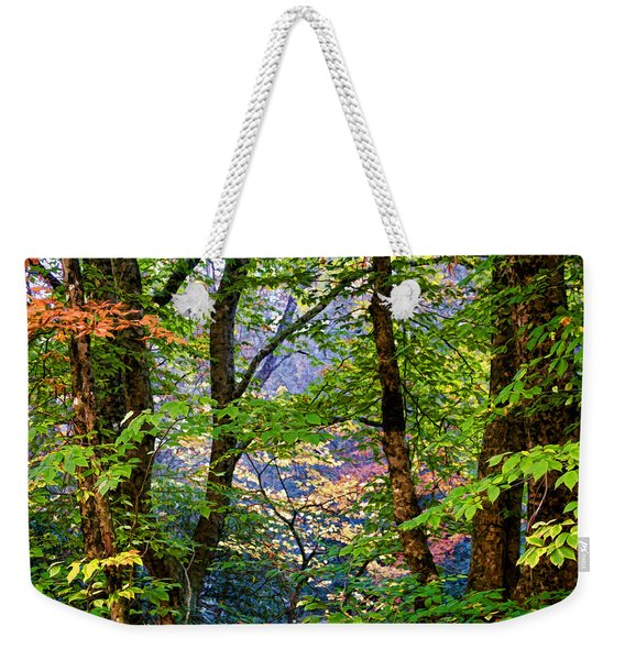 Land Of The Noonday Sun Weekender Tote Bag