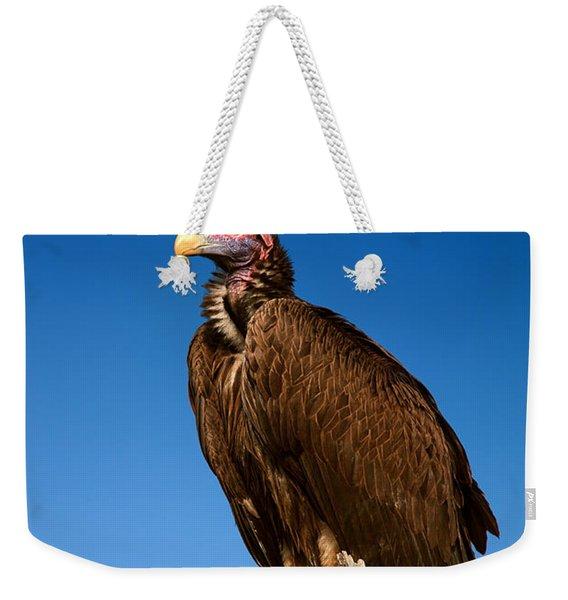 Lappetfaced Vulture Against Blue Sky Weekender Tote Bag