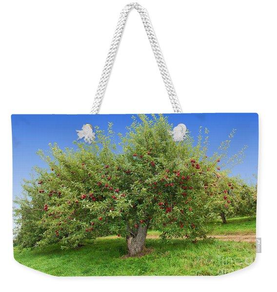 Large Apple Tree Weekender Tote Bag
