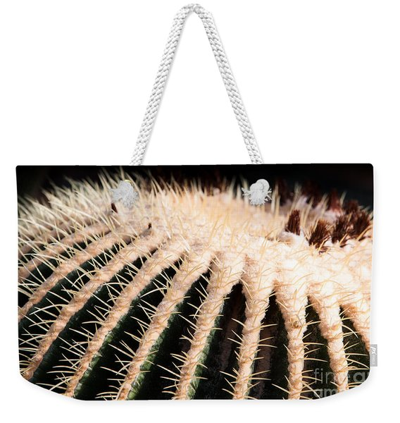 Weekender Tote Bag featuring the photograph Large Cactus Ball by John Wadleigh