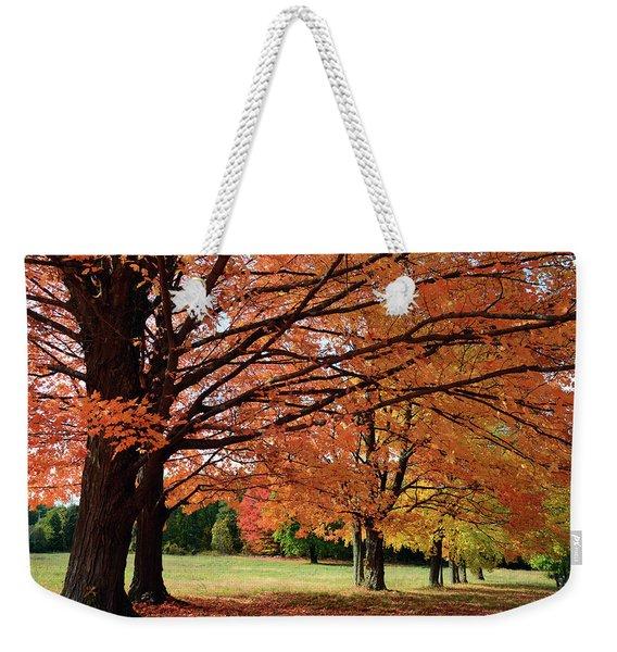 Large Sugar Maple Trees, Acer Weekender Tote Bag