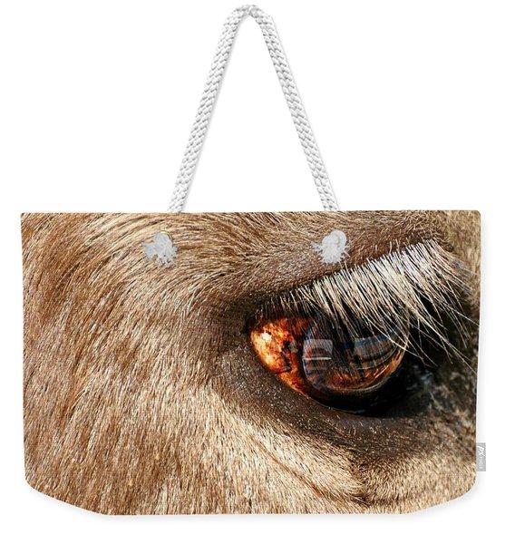 Lashes Weekender Tote Bag