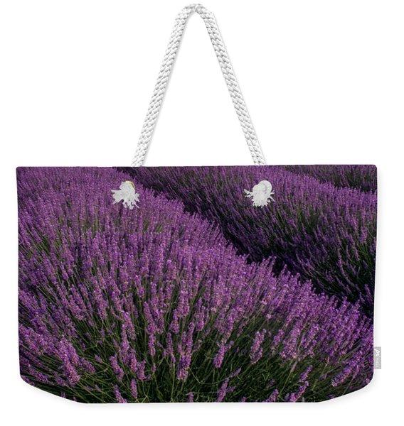 Lavender In Provence Weekender Tote Bag