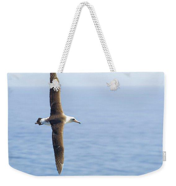 Laysan Albatross No 1 - Kilauea - Kauai - Hawaii Weekender Tote Bag