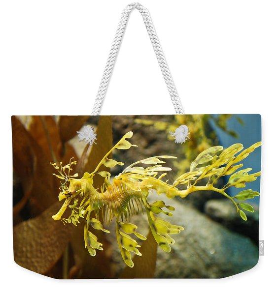 Leafy Sea Dragon Weekender Tote Bag