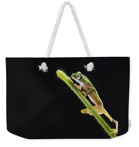 Lemur Leaf Frog Weekender Tote Bag