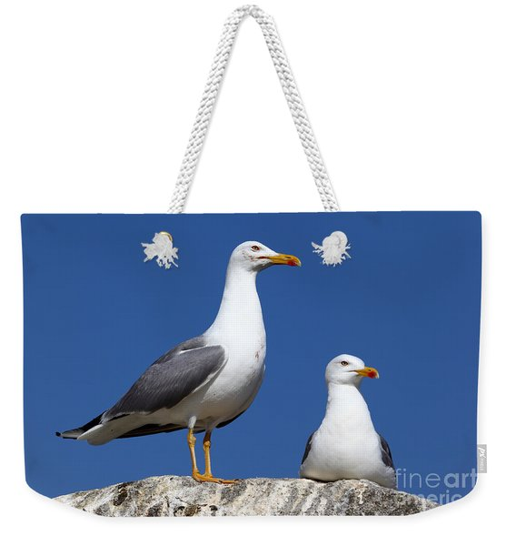 Lesser Black-backed Gulls Weekender Tote Bag