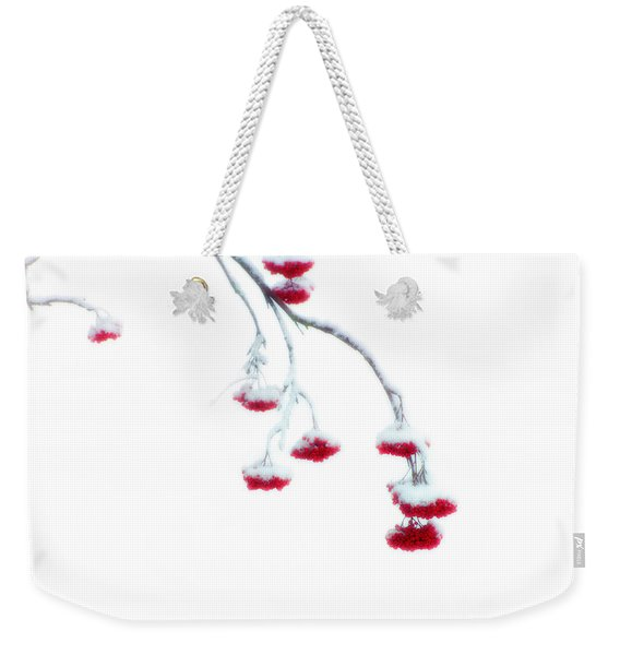 Weekender Tote Bag featuring the photograph Let Me Down Easy by Doug Gibbons
