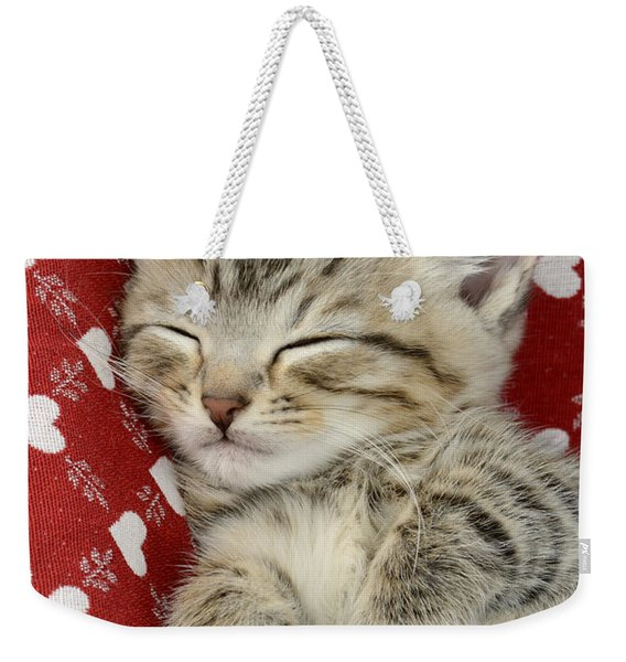 Let Me Sleep Weekender Tote Bag