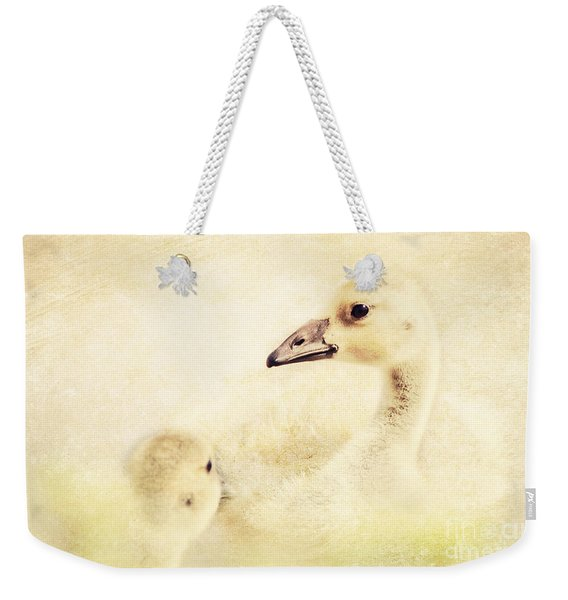 Let's Go For A Swim Weekender Tote Bag