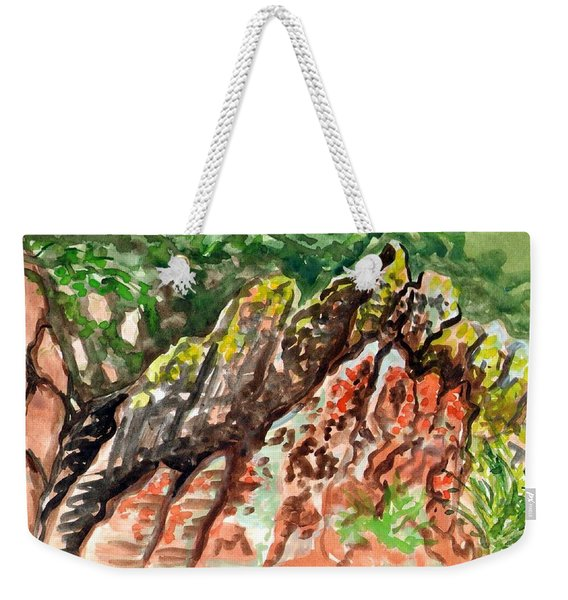 Weekender Tote Bag featuring the painting Lichen Rocks by Ashley Kujan