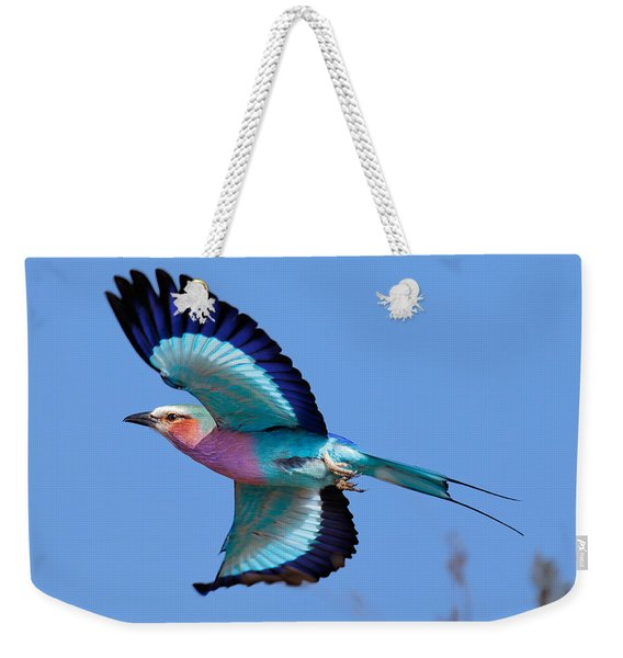 Lilac-breasted Roller In Flight Weekender Tote Bag