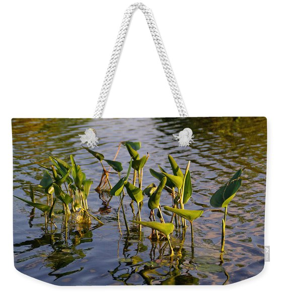Lillies In Evening Glory Weekender Tote Bag
