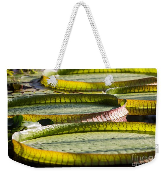 Weekender Tote Bag featuring the photograph Lilly Pads by John Wadleigh
