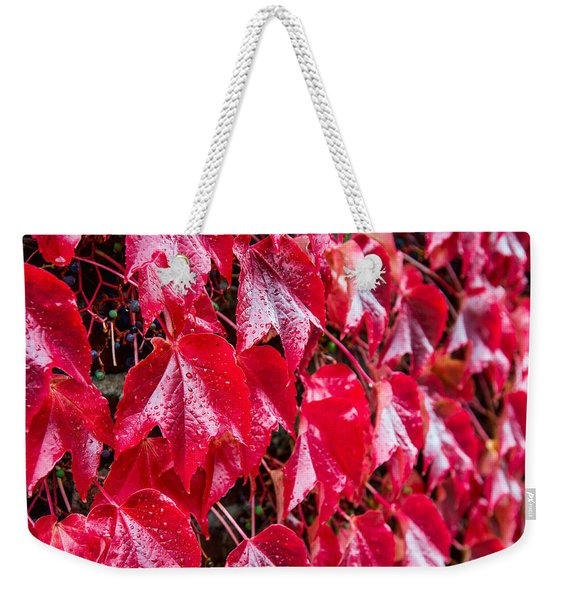 Linne Color Weekender Tote Bag