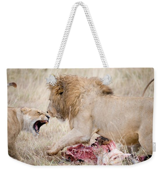 Lion And A Lioness Panthera Leo Weekender Tote Bag