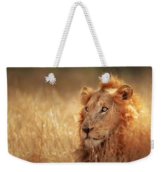 Lion In Grass Weekender Tote Bag