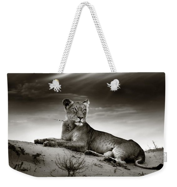 Lioness On Desert Dune Weekender Tote Bag