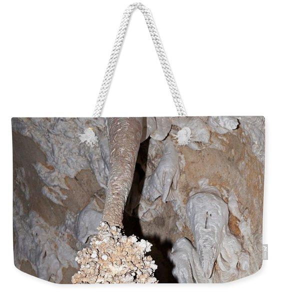 Lions Tail Carlsbad Caverns National Park Weekender Tote Bag