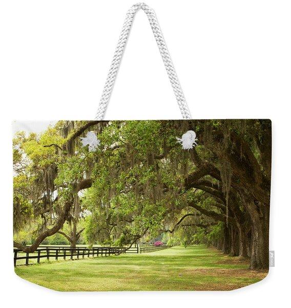Live Oak Trees In Charleston Weekender Tote Bag