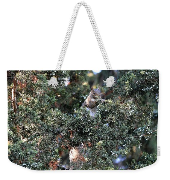 Live Squirrel Ornament Weekender Tote Bag