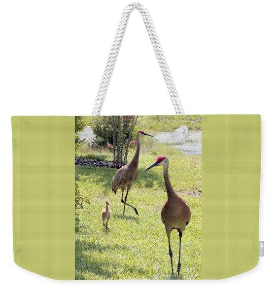 Looking For A Handout Weekender Tote Bag