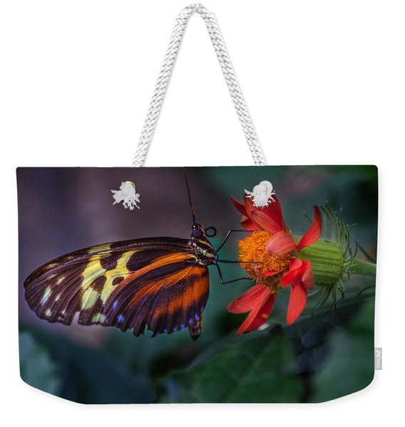 Weekender Tote Bag featuring the photograph Looking Up  by Garvin Hunter
