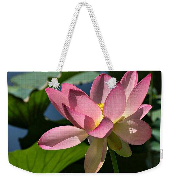 Lotus - Flowers Weekender Tote Bag