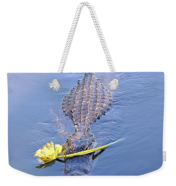 Lover Boy Alligator  Weekender Tote Bag