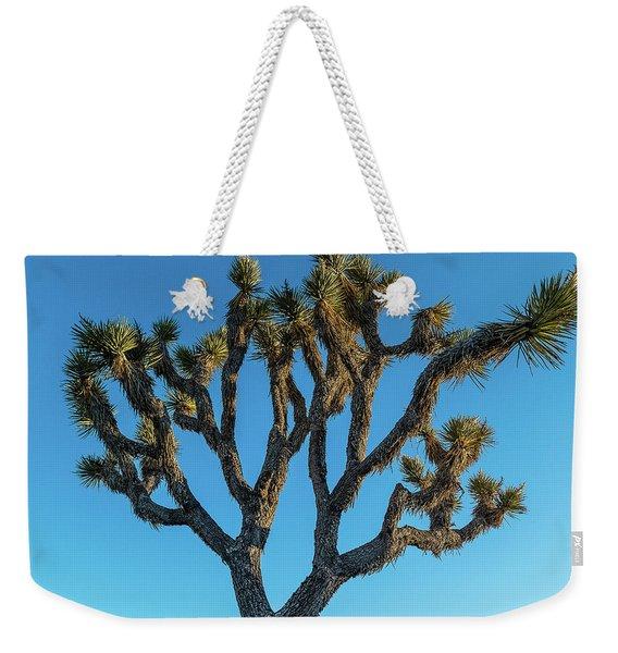 Low Angle View Of Joshua Tree, Joshua Weekender Tote Bag
