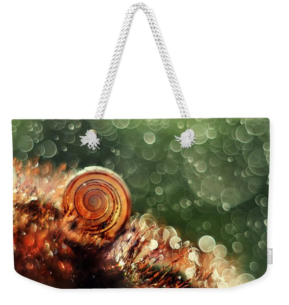Weekender Tote Bag featuring the photograph Magic Forest by Jaroslaw Blaminsky