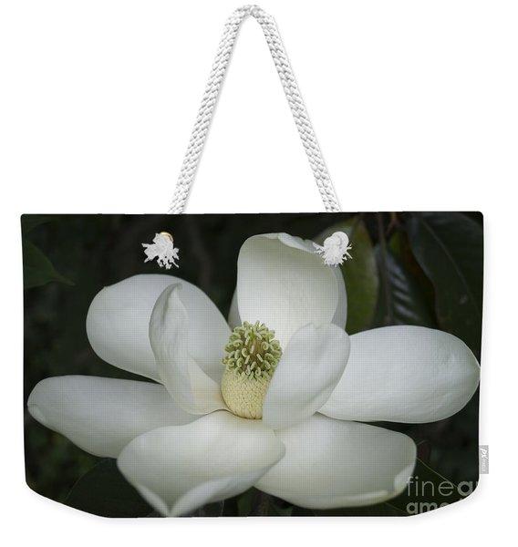 Magnolia Grandiflora Blossom - Simply Beautiful Weekender Tote Bag