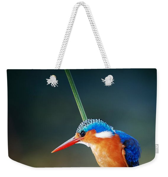 Malachite Kingfisher Weekender Tote Bag