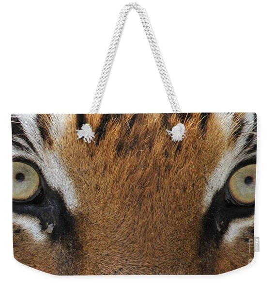 Malayan Tiger Eyes Weekender Tote Bag
