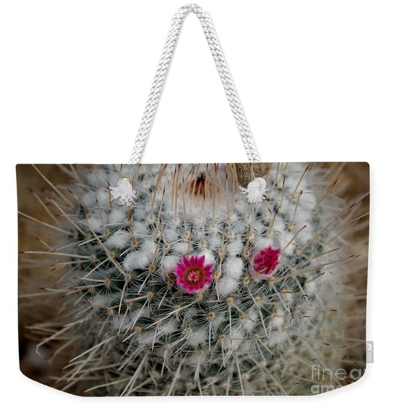 Weekender Tote Bag featuring the photograph Mammillaria Geminispina by Scott Lyons