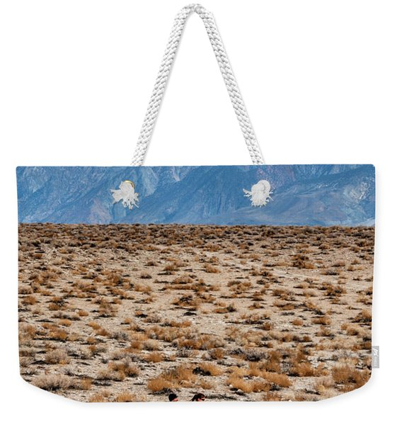 Man And Woman  Trail Running Weekender Tote Bag